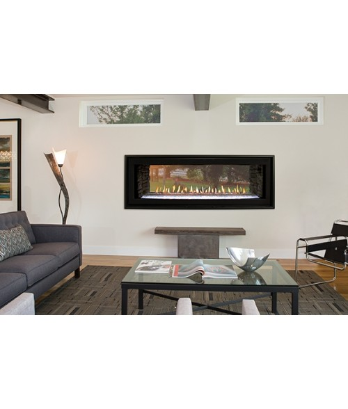 "Empire Boulevard 48"" Direct-vent See-Through Linear Fireplace (Indoor or Indoor/Outdoor)"
