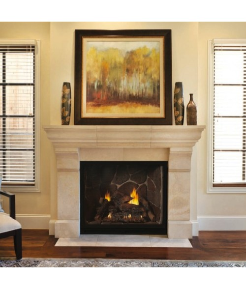 Fine Hearth Products Hearth Home Fireplace Fastfireplaces Com Best Image Libraries Barepthycampuscom