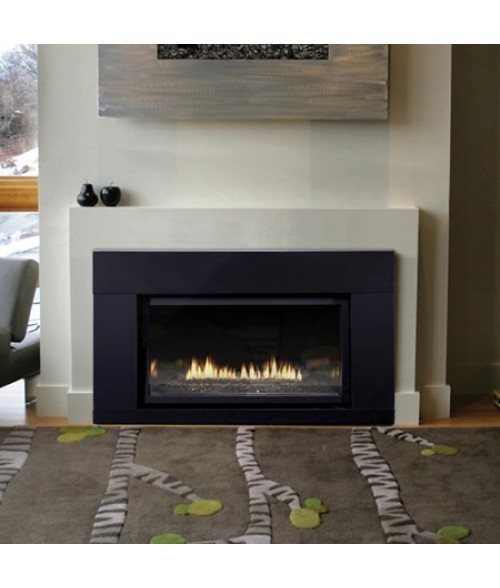 Empire Loft Direct-vent Fireplace Insert